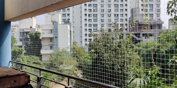 Bird Netting Services in Thergaon